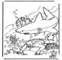 Duiker en haai