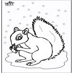 Kleurplaten Dieren - Eekhoorn 5