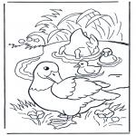 Kleurplaten dieren - Eenden