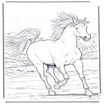 Kleurplaten Dieren - Galopperend paard