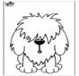 Hond 11