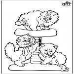 Kleurplaten Dieren - Katjes