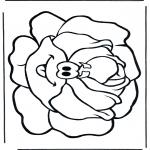 Allerlei Kleurplaten - Krop sla