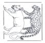 Leeuw en Luipaard
