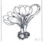 Lente bloemen 1