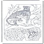 Kleurplaten Dieren - Luipaard 1