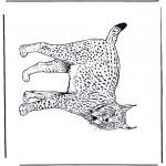 Kleurplaten Dieren - Lynx