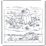Kleurplaten Dieren - Marmot