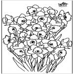 Allerlei Kleurplaten - Narcis