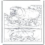 Kleurplaten Dieren - Nijlpaard 1