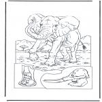 Kleurplaten Dieren - Olifant 1