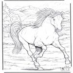 Kleurplaten Dieren - Paard 4