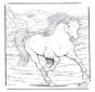 Paard 4
