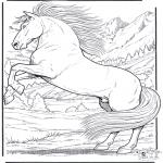 Kleurplaten Dieren - Paard 5