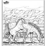 Kleurplaten dieren - Paard 6
