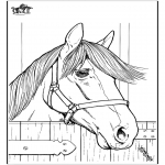 Kleurplaten dieren - Paard 7