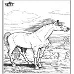 Kleurplaten dieren - Paard 9