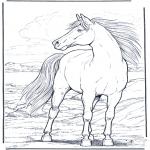 Kleurplaten Dieren - Paard in de wind