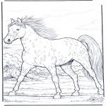 Kleurplaten dieren - Paard in gallop