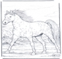 Paard in gallop