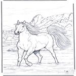 Kleurplaten Dieren - Paard in het water
