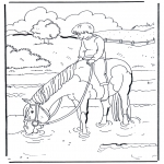 Kleurplaten Dieren - Paard in water