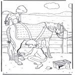 Kleurplaten Dieren - Paard verzorgen