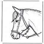 Kleurplaten dieren - Paardenhoofd 2