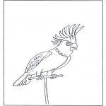 Kleurplaten dieren - Papegaai 4