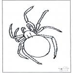 Kleurplaten Dieren - Spin