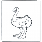 Kleurplaten Dieren - Struisvogel 1