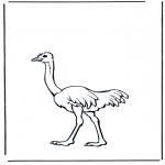 Kleurplaten dieren - Struisvogel 2