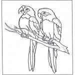 Kleurplaten dieren - Twee ara's