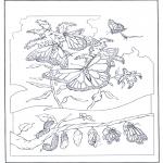 Kleurplaten Dieren - Vlinders 2
