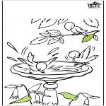 Allerlei Kleurplaten - Voorjaar vogels