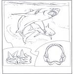 Kleurplaten Dieren - Witte mensenhaai