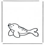Kleurplaten Dieren - Zeehond 1