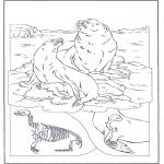 Kleurplaten Dieren - Zeeleeuwen