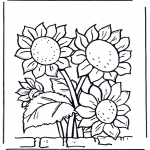 Allerlei Kleurplaten - Zonnebloemen